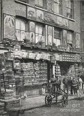 Bird Market, London, 1890s Poster