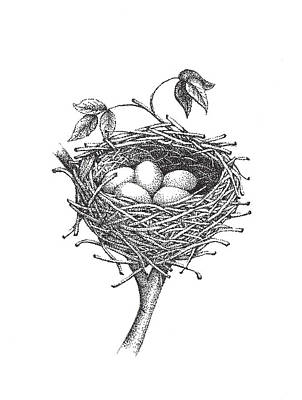 Bird Nest Poster by Christy Beckwith