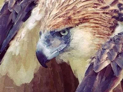Bird Of Prey Portrait Poster by Scott Wallace