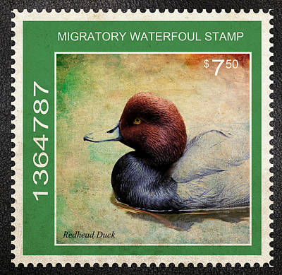 Bird Stamp Poster by Steve McKinzie