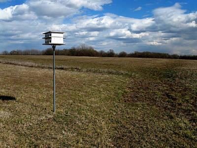 Birdhouse In Field Poster