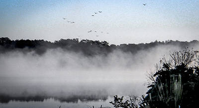 Birds Fly Above The Steamy Lake Poster by Christy Usilton