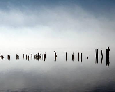 Birds In Fog Poster