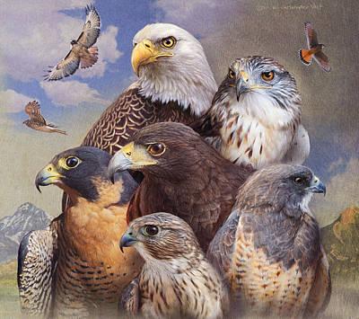 Birds Of Prey Western Colorado Poster by R christopher Vest
