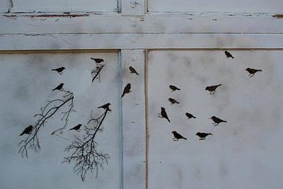 Birds On The Garage Poster