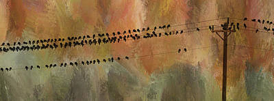 Birds On The Power Lines Poster