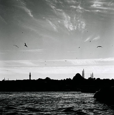 Birds Over The Golden Horn Poster