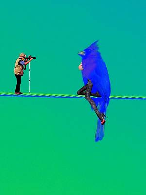 Birdwatcher Poster by David Mckinney