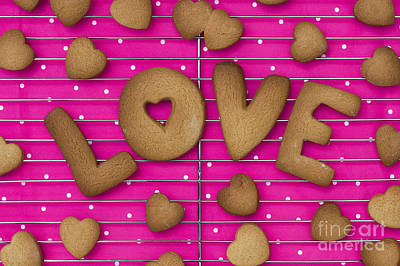 Biscuit Love Poster by Tim Gainey