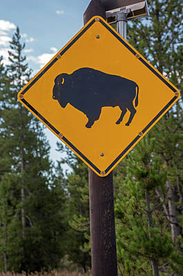Bison Sign Poster by Jim West