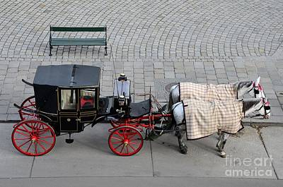 Poster featuring the photograph Black And Red Horse Carriage - Vienna Austria  by Imran Ahmed