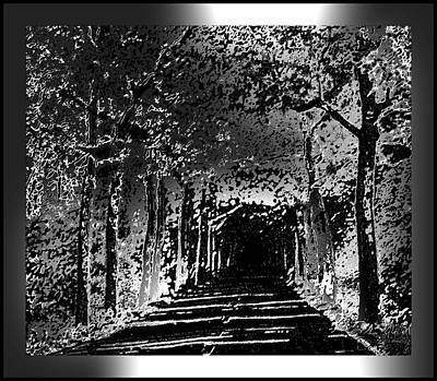 Black And Silver With Border Poster by L Brown