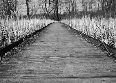 Black And White Bridge Over Swamp Poster by Dan Sproul