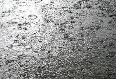 Black And White Rain Poster by Leena Pekkalainen