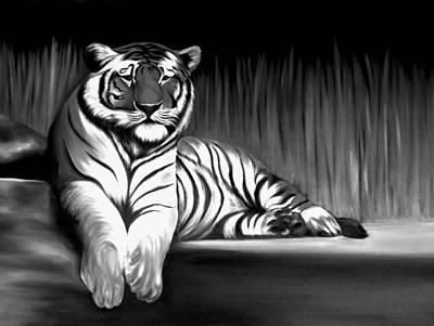 Black And White Tiger Poster by Xafira Mendonsa