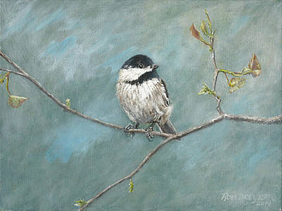 Black Capped Chickadee Poster by Dreyer Wildlife Print Collections