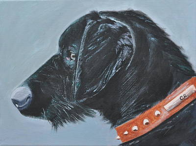 Black Dog With Studded Collar Poster