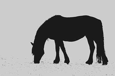 Black Horse Poster by Karon Melillo DeVega