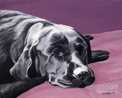 Black Labrador Beauty Sleep Poster