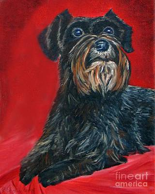 Black Schnauzer Pet Portrait Prints Poster by Shelia Kempf