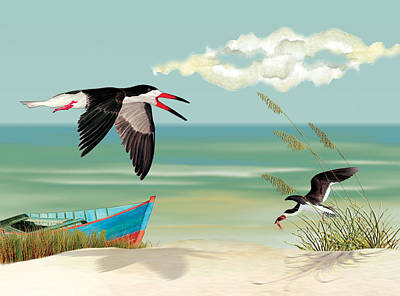 Black Skimmers Fishing Poster by Anne Beverley-Stamps