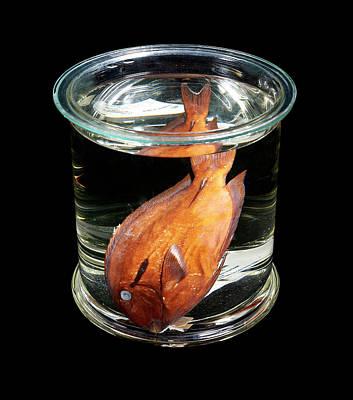 Black Surgeonfish Poster