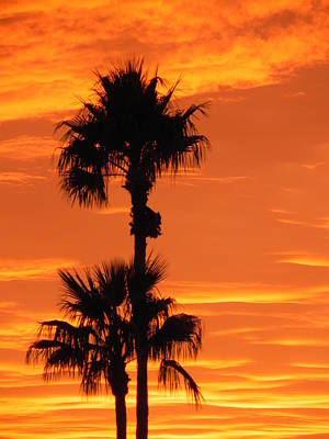 Poster featuring the photograph Blazing Sunset by Deb Halloran