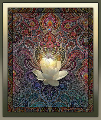 Bloom Poster by Richard Laeton