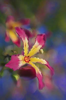 Bloomin Hong Kong Orchid Poster
