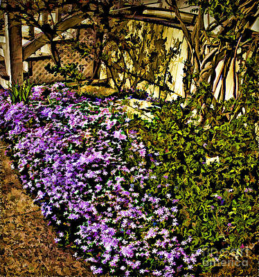Blooms Beside The Steps Poster