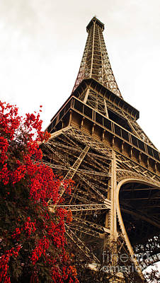 Blossoming Paris Eiffel Tower Poster by Phill Petrovic