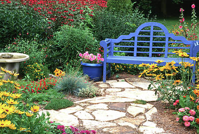 Blue Bench, Potted Plants And Birdbath Poster