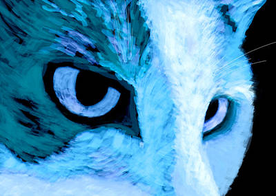 Blue Cat Face Poster