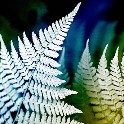 Blue Fern Leaf Art Poster