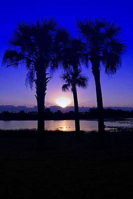 Poster featuring the photograph Blue Florida Sunrise by Susan D Moody