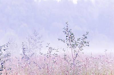 Blue Fog Poster