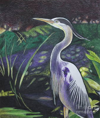 Blue Heron Poster by Terri Thompson