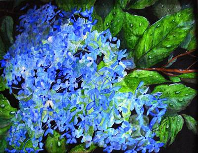 Blue Hydrangea After The Rain Poster by June Holwell