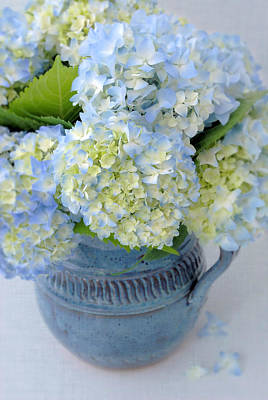 Blue Hydrangeas In Blue Pottery Poster