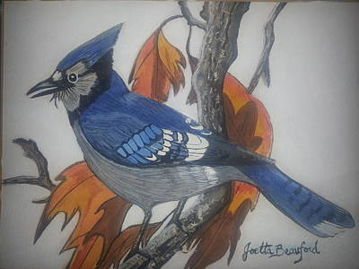 Blue Jay At Fall Poster by Joetta Beauford