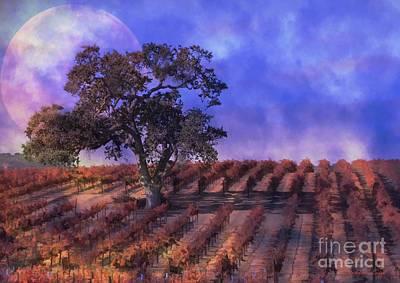 Blue Moon Vineyard Poster