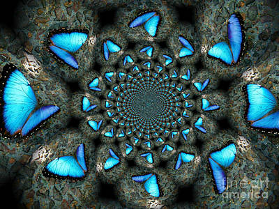 Blue Morpho Morphed Poster by Deb Schense