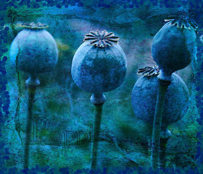 Poster featuring the photograph Blue Poppy Grunge by Sandra Foster