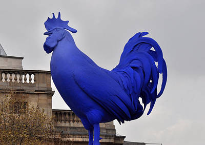 Blue Rooster In Trafalgar Square London Poster by Diane Lent