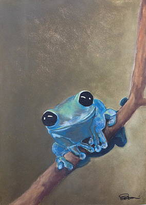 Blue Tree Frog On A Branch Poster
