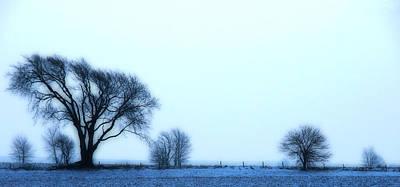 Blue Treeline Poster