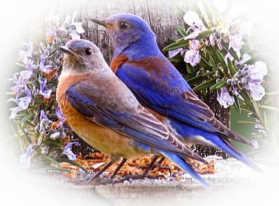 Bluebird Wedding Poster by Jean Noren