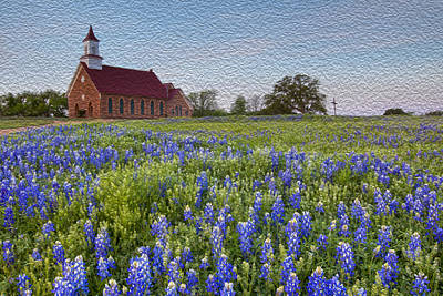 Bluebonnet Field And A Church In The Texas Hill Country - Oil Poster