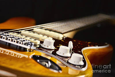 Blues Guitar Poster by Eyzen M Kim