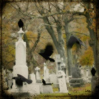 Blur Of Crows Poster by Gothicrow Images
